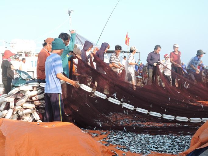 Tàu cá của ngư dân Nguyễn Văn Tri cập đảo sau một đêm bám biển, bám ngư trường ven đảo.