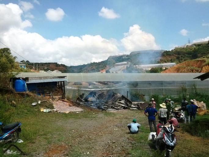 Vụ cháy còn làm ngôi nhà kính bên cạnh bị hư hại - ảnh: M.Hải
