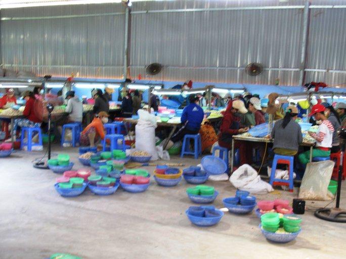 Xưởng hạt điều xây trái phép trên đất bí thư huyện Lê Hoàng Sang