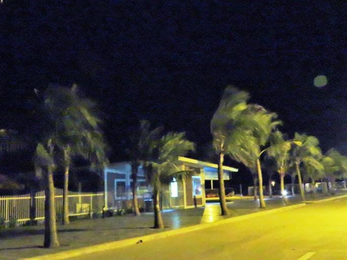 cây cối ở đảo Tuần Châu (Quảng Ninh) ngả nghiên vì gió mạnh