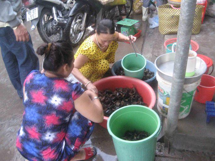Do khan hiếm nên ngày càng có nhiều người tìm mua cua đồng ở chợ