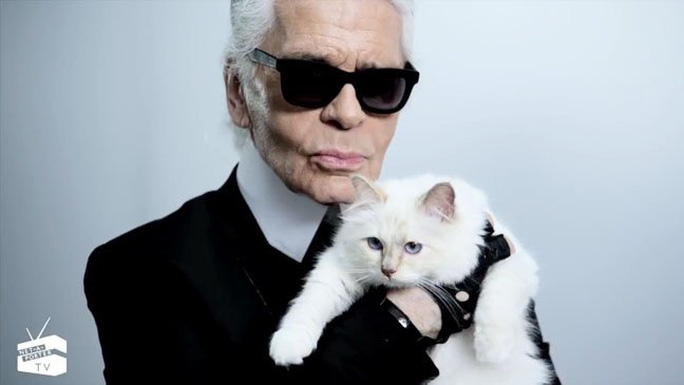Mèo của nhà thiết kế Karl Lagerfeld được nhiều hợp đồng quảng cáo