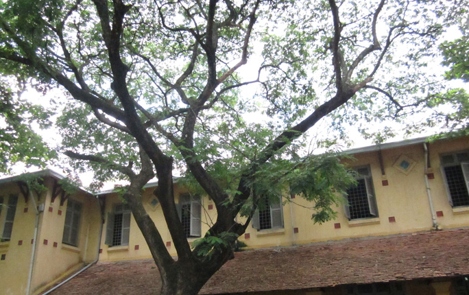 Collège de Can Tho là công trình kiến trúc cổ có giá trị về lịch sử, văn hóa, mỹ thuật