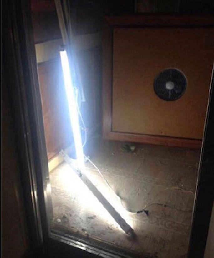 Đèn thang máy rơi xuống. Ảnh: Weibo