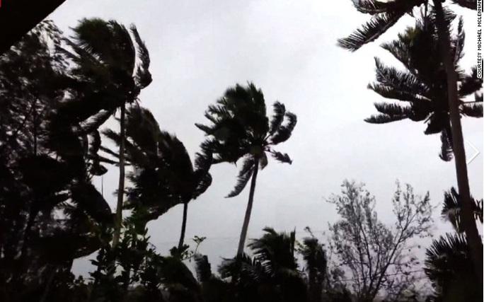 Những cây cọ bị gió quật khi siêu bão Pam đổ bộ vào Port Villa hôm 13-3. Nguồn: CNN