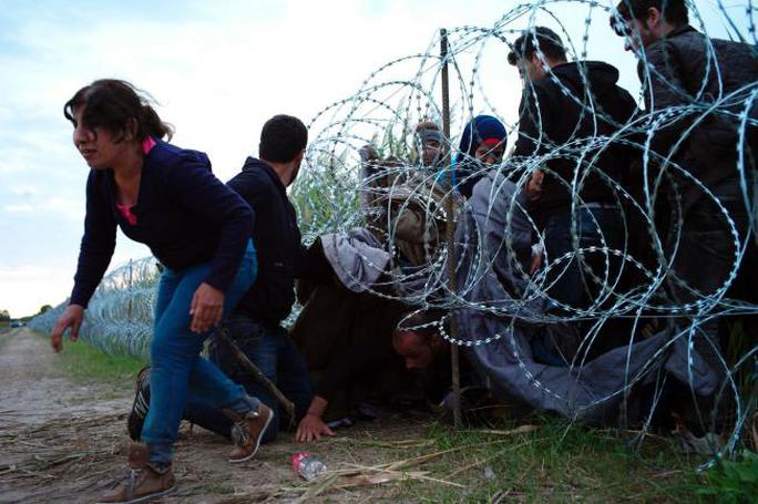 Nhiều người cố chui qua khe hở hàng rào. Ảnh: AP