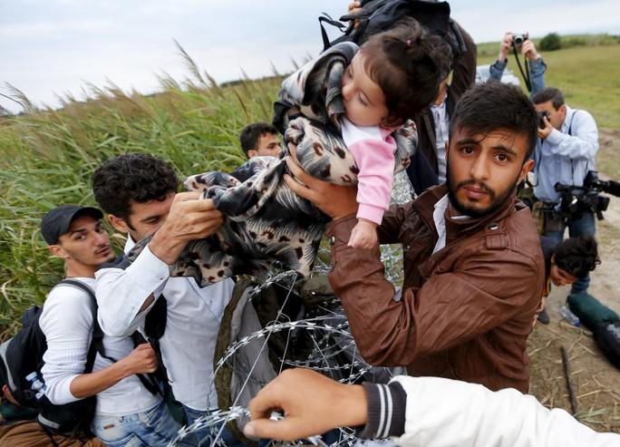 Một bé gái được bế qua hàng rào dây thép gai ở biên giới Hungary-Serbia. Ảnh: Reuters
