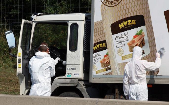 Các nhà điều tra lục soát chiếc xe tải chở thi thể đang phân hủy của 71 người nhập cư trái phép ở Áo hôm 27-8Ảnh: AP