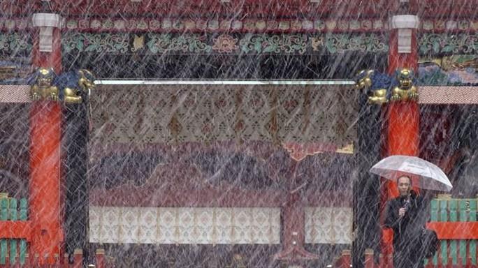 Cư dân địa phương bất ngờ vì tuyết rơi sớm hơn thường lệ. Ảnh: REUTERS, AP