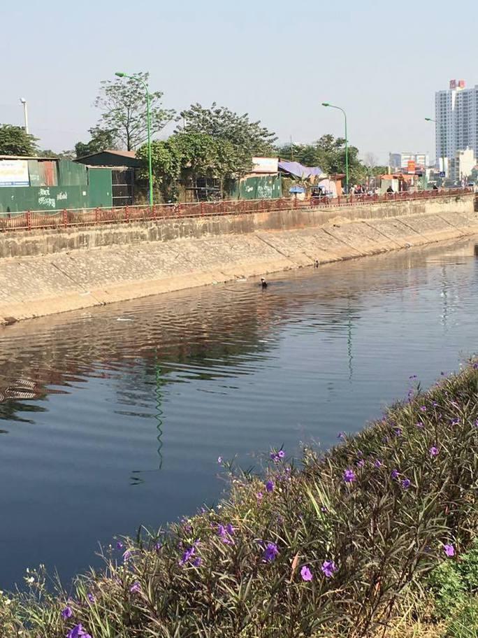 Nam thanh niên bơi dưới sông Tô Lịch hòng tẩu thoát