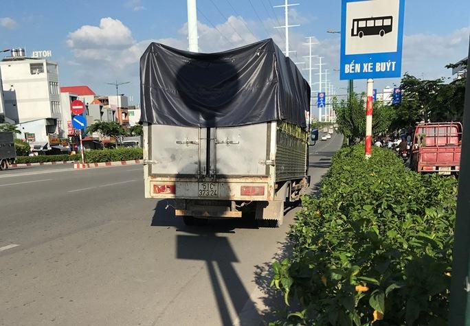 Cách đó không xa là chiếc xe tải liên quan trong vụ tai nạn