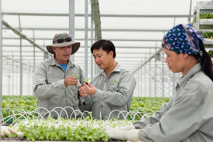 Nông dân được doanh nghiệp hỗ trợ sản xuất nông sản an toàn Ảnh: NGUYỄN TUYỀN