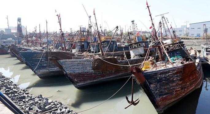 Một số tàu cá Trung Quốc bị Hàn Quốc bắt giữ. Ảnh: Reuters