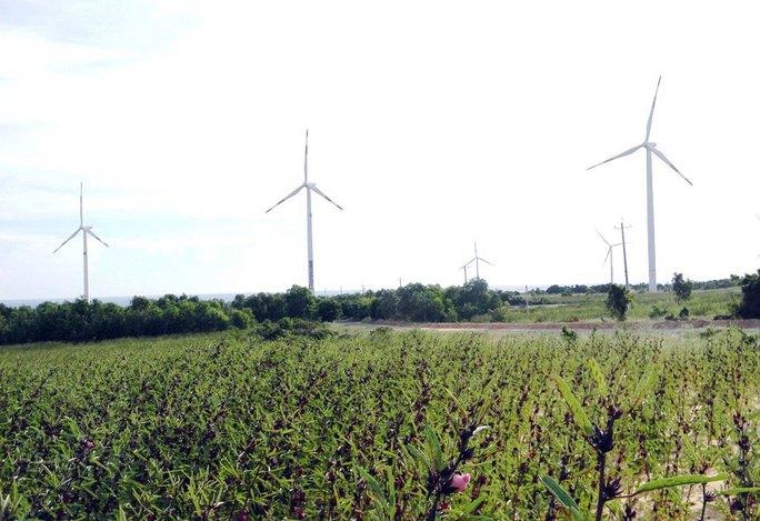 Nhà máy Điện gió Phú Lạc sắp hoạt động, hòa lưới điện quốc gia Ảnh: MINH HẢI