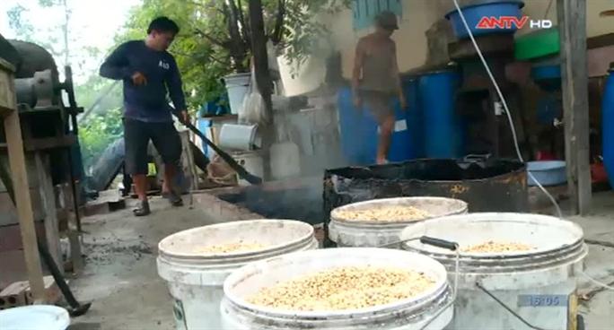 Quá trình chế biến cà phê của cơ sở của ông Nguyễn Văn Mẫu