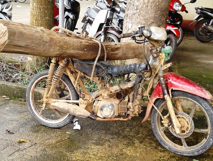 Khúc gỗ dài khoảng 2 m, đường kính 17 cm và chiếc xe bị tạo giữ tại UBND xã Phước Lộc, Đạ Huoai (Lâm Đồng).