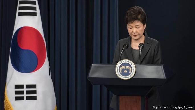 Tổng thống Hàn Quốc Park Geun-hye. Ảnh: DPA