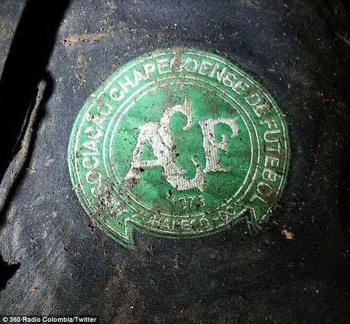 Logo của CLB tại hiện trường