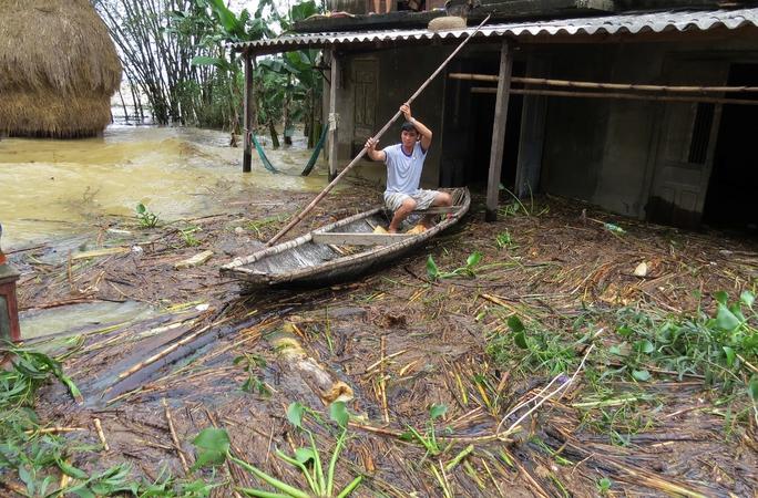 Rác ngập cả vùng làm hư hại cây trồng