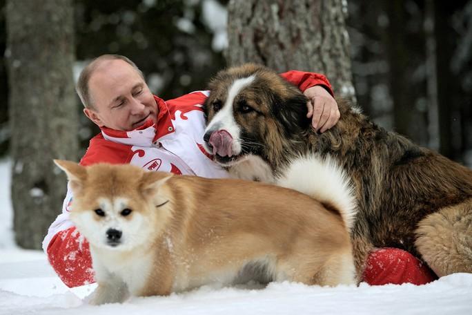 Ông Putin chơi đùa cùng 2 con chó cưng Buffy và Yume. Ảnh: SPUTNIK NEWS