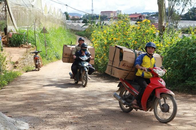 Sinh viên túc trực nhiều ngày mới mua được ít hoa để bán kiếm lời.