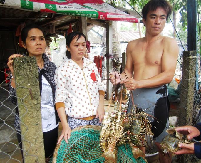 Vợ chồng anh Lê Văn Hải (xã Xuân Cảnh) thẫn thờ với số tôm hùm sắp thu hoạch bị chết hàng loạt
