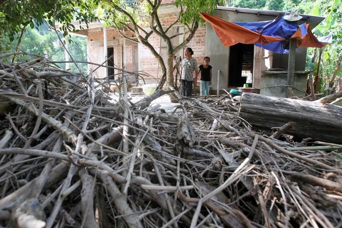 Đường vào thôn cây cối bị lũ cuốn trôi dồn đầy hai bên đường và trước nhà dân
