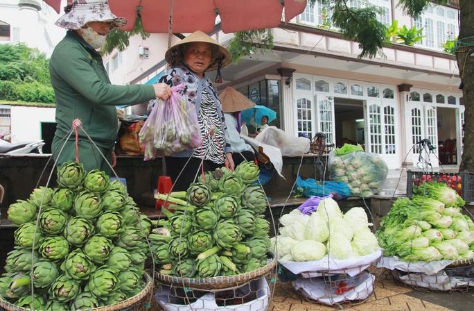 Bông astiso tại TP Đà Lạt giá tăng gấp 3 lần so với ngày thường.