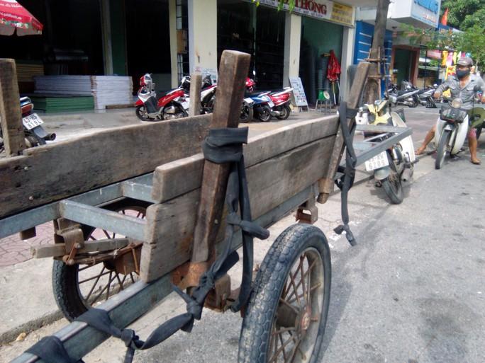 Hầu hết những chiếc xe bò chở vật liệu đều tồi tàn, xuống cấp nghiêm trọng