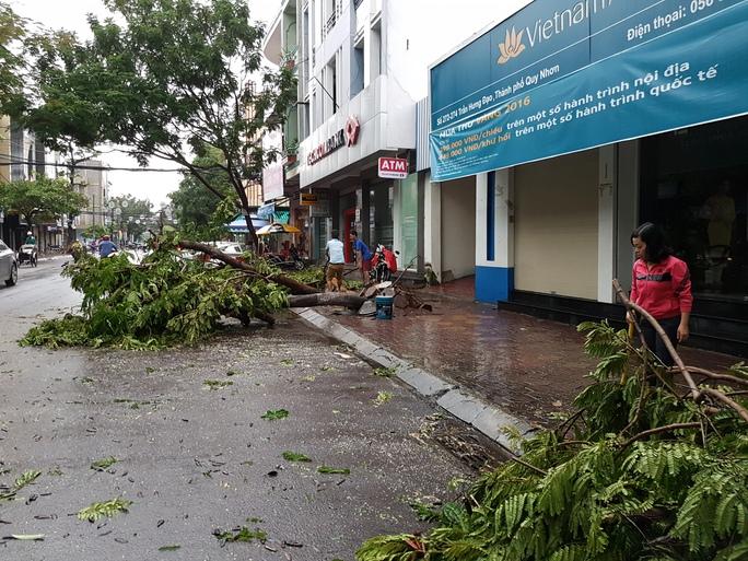 Cây xanh ngã đổ hàng loạt trên đường Trần Hưng Đạo, TP Quy Nhơn