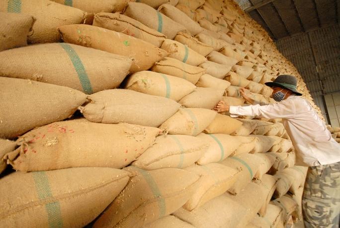 Gạo Việt ngày càng khó xuất khẩu sang Trung Quốc Ảnh: NGỌC TRINH