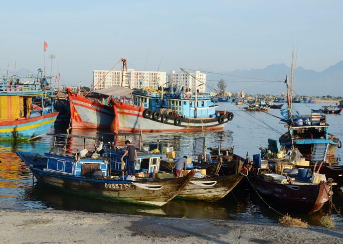 Từ nay đến năm 2020, TP Đà Nẵng sẽ giảm tàu công suất nhỏ đánh bắt gần bờ nhằm bảo vệ môi trường, phát triển nghề cá hiệu quả