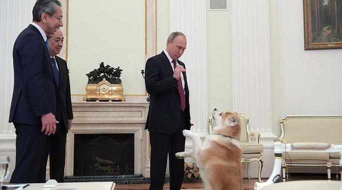 Tổng thống Nga Vladimir Putin và 2 phóng viên Nhật Bản tại cuộc phỏng vấn diễn ra hôm 7-12 Ảnh: Điện Kremlin