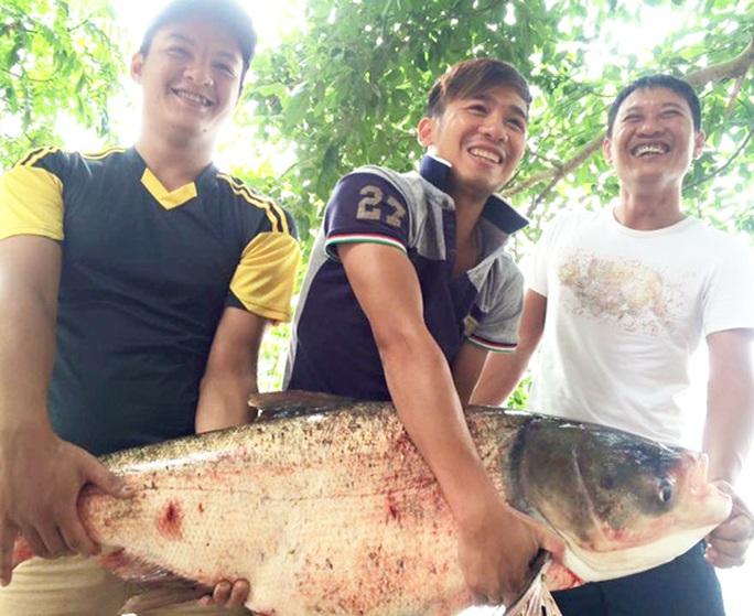 """Con cá mè nặng 19 kg là thành quả trong một lần đi săn cá """"khủng"""" của nhóm cần thủ ở thị trấn Cẩm Giàng"""