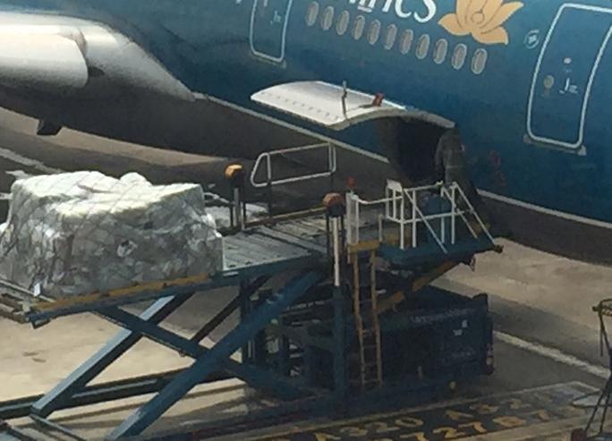 Dỡ hàng từ hầm máy bay là công đoạn được giám sát bằng camera di động - Ảnh: Phương Anh