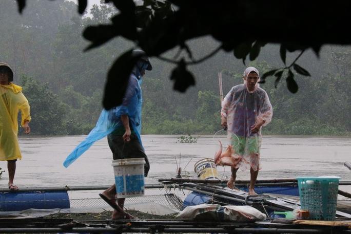 Họ phải đội mưa để cứu vớt từng đồng vốn bỏ ra