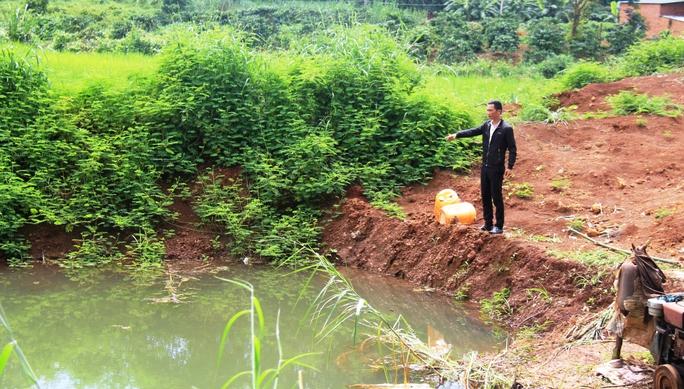 Hồ nước nơi phát hiện thi thể anh Duy cùng hai con
