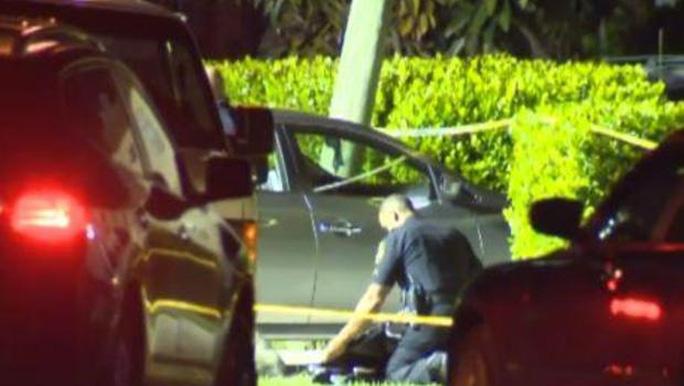 Cảnh sát điều tra hiện trường vụ tai nạn thương tâm. Ảnh: CBS