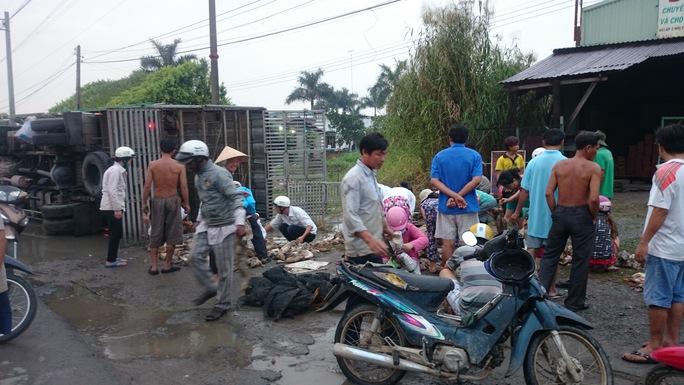 Hàng trăm người phụ gom vịt và mua lại những con vịt đã chết để hỗ trợ chủ nuôi