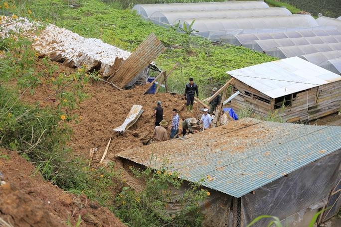 Người dân và chính quyền địa phương nỗ lực cứu đàn heo nhưng bất thành.