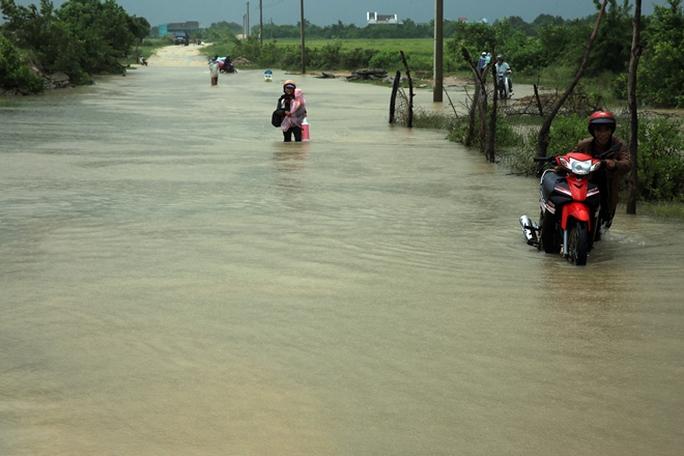 Nhiều tuyến đường liên thôn của huyện Thuận Nam bị ngập sâu, giao thông qua khu vực rất khó khăn
