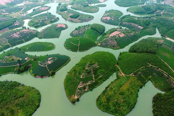Thanh Chương là một trong những huyện có diện tích chè lớn nhất Nghệ An. Và bàn tay của những người trồng chè dường như đã vô tình tạo nên một cảnh sắc thiên nhiên làm xiêu lòng khách thập phương. Ảnh: Sách Nguyễn