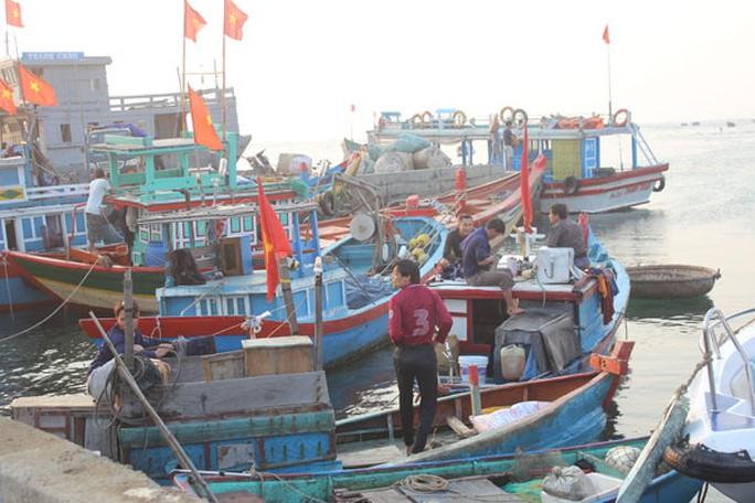 Những con tàu neo bờ chờ ăn hàng ra khơi.