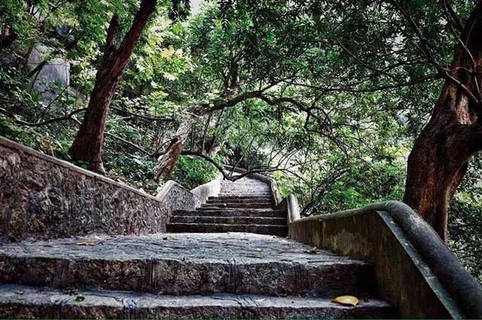 Bậc thang đá lên động chùa được bao phủ bởi cây xanh, quanh năm mát mẻ.