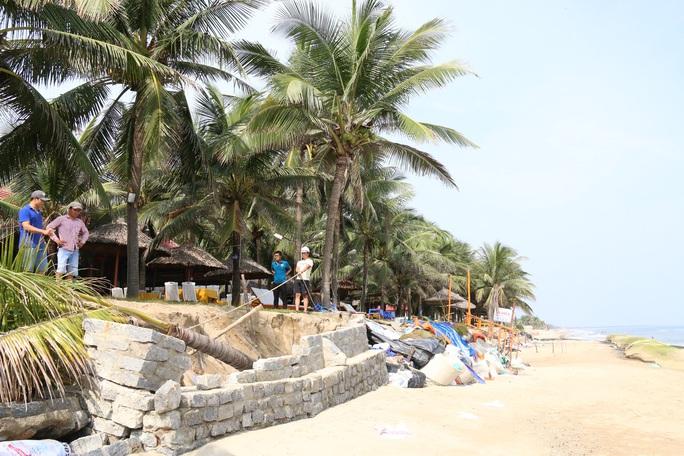 Sạt lở bờ biển Cửa Đại (tỉnh Quảng Nam) là hậu quả của việc quản lý lưu vực sông Vu Gia - Thu Bồn không hợp lý