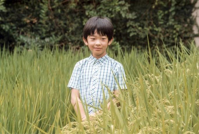 Hoàng tử bé Hisahito. Ảnh: REUTERS