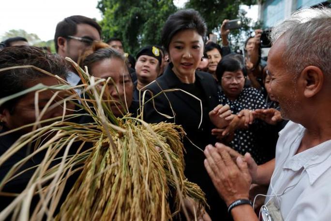 Bà Yingluck trong vòng vây người ủng hộ khi bà đến tòa án tối cao ở Bangkok hôm 4-11. Nhiều người cầm theo lúa hoặc tờ tiền 20 baht. Ảnh: Reuters