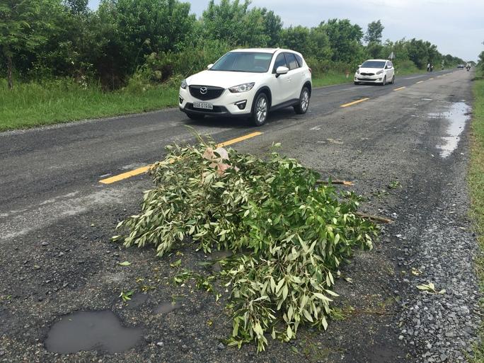 Tại ổ voi này đã xảy ra nhiều vụ tai nạn, người dân phải lấy nhánh cây để cảnh báo các phương tiện qua lại
