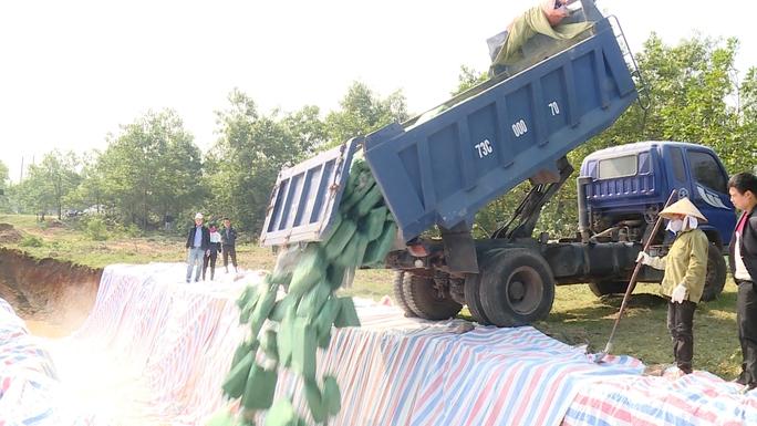 Lực lượng chức năng tỉnh Quảng Bình tổ chức tiêu hủy hải sản nhiễm độc