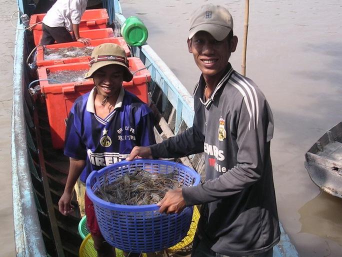 Việt Nam là nước xuất khẩu tôm lớn thứ 2 trên thế giới. Ảnh: Hoàng Lê